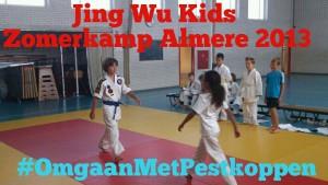Kung fu zomerkamp almere 2015